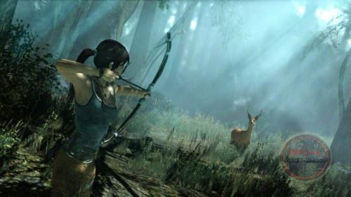 Tomb-Raider-2013-deer-hunting-Image-e1339457783734