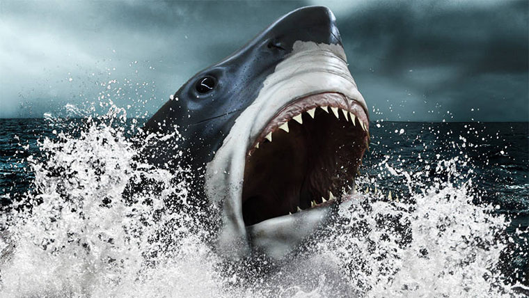 bf4-mega-shark