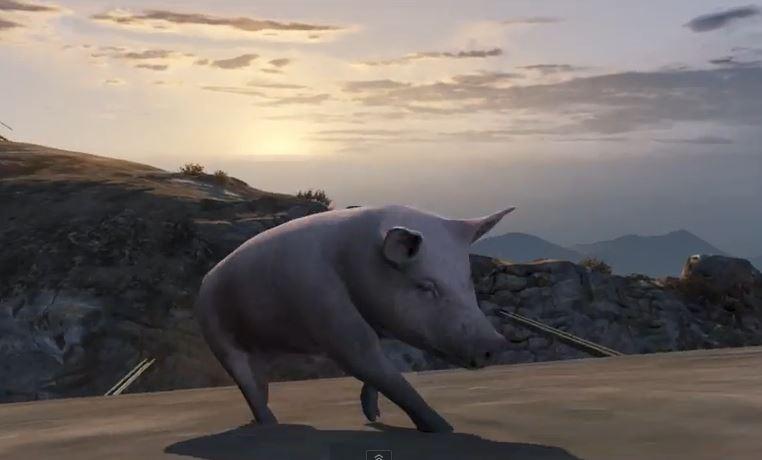 gta-5-pig-animal-mod