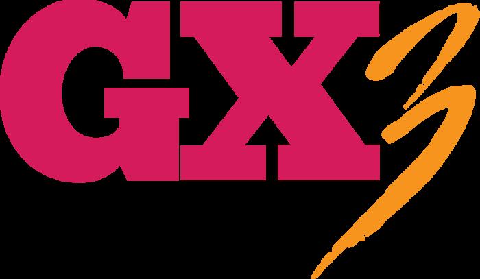 gaymerX GX3
